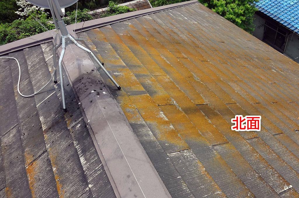 カラーベスト屋根の北面のコケ、カビの生えた状態の写真