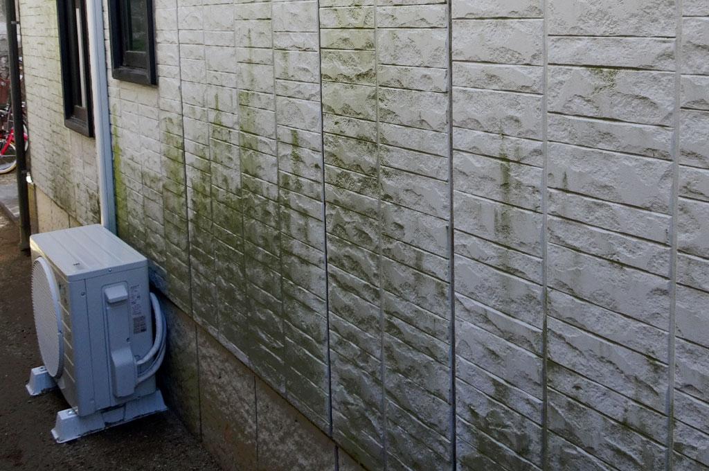 防水性が切れたサイディングボード表面のカビ、藻、コケ